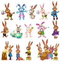 Verschillende karakters van konijntjes vector