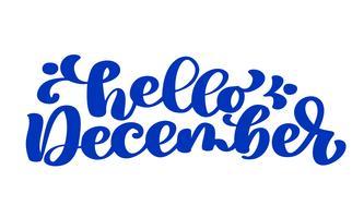 Hallo december blauwe tekst, hand belettering zin. Vector illustratie t-shirt of briefkaart afdrukken ontwerp, vector kalligrafie tekst ontwerpsjablonen, geïsoleerd op een witte achtergrond