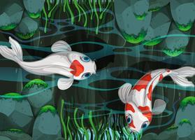 Twee vissen die in de vijver zwemmen vector