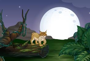 Lynx en bos vector