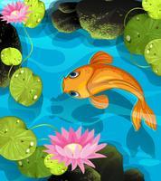 Koi zwemmen in de lotus pool vector