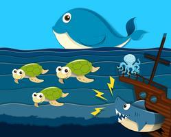Shark-aanvalsschip onder de zee vector