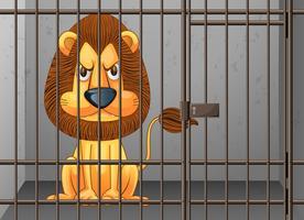 Leeuw wordt opgesloten in de kooi vector