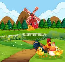 Kippenfamilie bij landbouwgrond