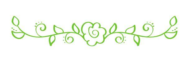 Groene Vector Hand getrokken kalligrafische scheidingsteken. Lente bloeit designelement. Bloemenlicht stijldecor voor groetkaart, Web, huwelijk en druk. Geïsoleerd op witte achtergrond Kalligrafie en belettering illustratie