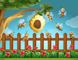 Bijen vliegen rond de bijenkorf in de tuin vector