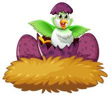 Vogel in het ei op het nest