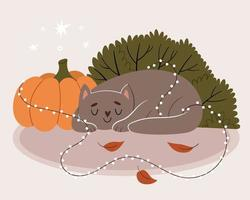 de grijze kat slaapt in de buurt van de pompoen. de kat is verstrikt in een nieuwjaarsslinger. herfst stemming. vector