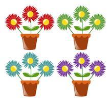 Vier bloempotten met bloemen