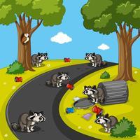 Wasberen in het parkhoogtepunt van afval