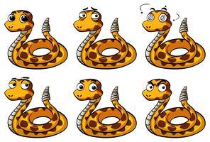 Rammelaar slang met verschillende gezichtsuitdrukkingen