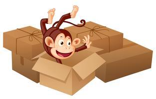 Een lachende aap en dozen