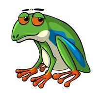 Groene kikker met droevige ogen