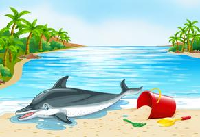Dolfijn die op het strand ligt vector