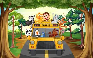 Dieren en bus