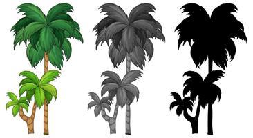Set van palmboom
