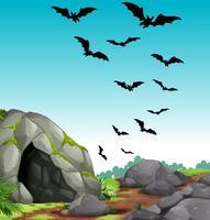 Vleermuizen vliegen uit de grot