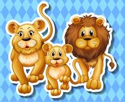 Leeuwfamilie op blauwe achtergrond