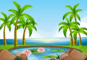 Scène met vijver dicht bij de oceaan