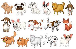 Verschillende rassen van honden vector