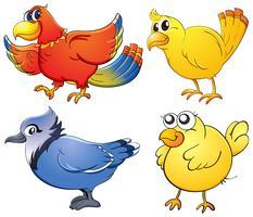 vogelstand vector