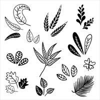 Set van vintage stijl bladeren. vector