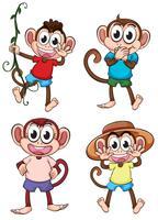 Vier giechelende apen