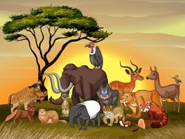 Wilde dieren op het savannegebied vector