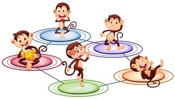 Apen die zich op ronde platen bevinden