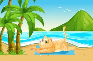 Gele kat ontspannen op het strand