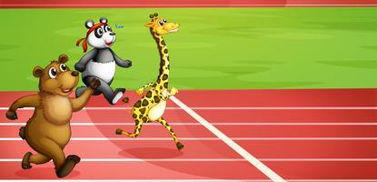 Een dierenmarathon vector