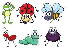 Verschillende insecten en dieren vector
