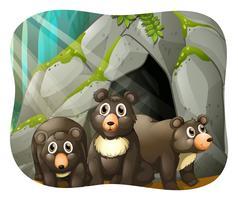 Grizzlyberen die in de grot leven vector