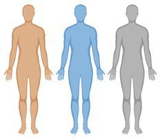 Menselijk lichaam schets in drie kleuren