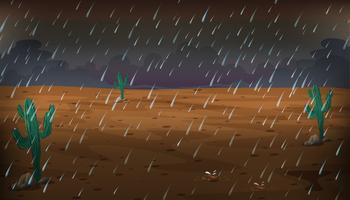 Woestijnscène op regenachtige dag