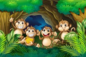 Happy apen in diepe bossen