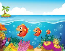 Een school vissen bij de koraalriffen