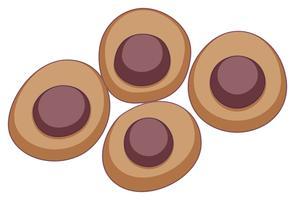 Ronde stamcel in bruine kleur