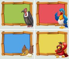 Frame ontwerp en wilde vogels