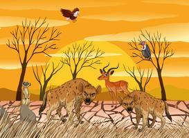 Wilde dieren die op het droge leven