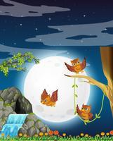 Een uil in de natuur 's nachts