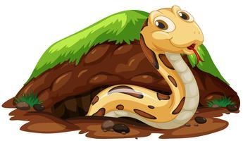 Een slang die in het gat leeft