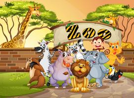 Gelukkig dier in de dierentuin vector