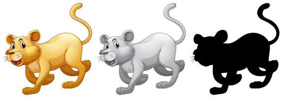 Set van vrouwelijke leeuw