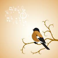 De goudvinkvogel van de winter tweets op een boomtak