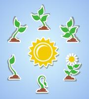 Groei vooruitgang pictogrammen vector