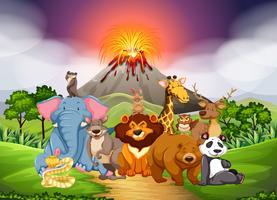 Wilde dieren in het veld met vulkaan achtergrond vector