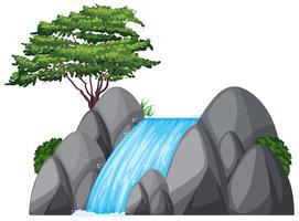 Waterval en groene boom op de rots