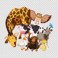Veel wilde dieren op transparante achtergrond