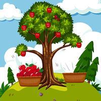 Rode appelboom in het veld vector